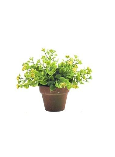 Warm Design Yapay Yeşillik  Yeşil